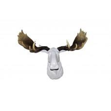 Лось белый натуральные рога