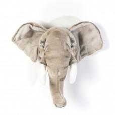 Слон Серый Георгий